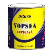 Vopsea Lucioasa PITURA – KOBER